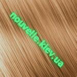 Золотистый пепельный блондин (9.31)