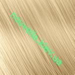 10.0-Экстра-блонд очень светлый плюс