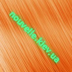 Бронзовые оттенки Nouvelle Светло-медный золотисто-коричневый (8.43)