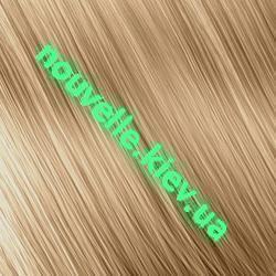 Золотистые оттенки Nouvelle Золотистый блондин (9.3)