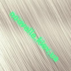 Палитра красок для волос Nouvelle SMART (44 цвета) Nouvelle SMART Серебряная луна (9.201)